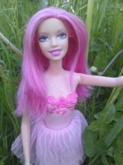 barbie fairy pink hair 2009