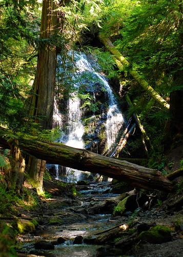 Cascade Falls, Moran State Park