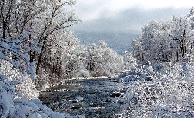 Girl Forest Wallpaper Yampa River Winter Steamboat Springs Colorado By