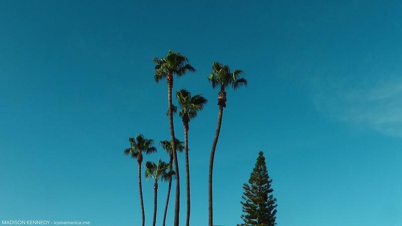 Los Angeles is Wonderland