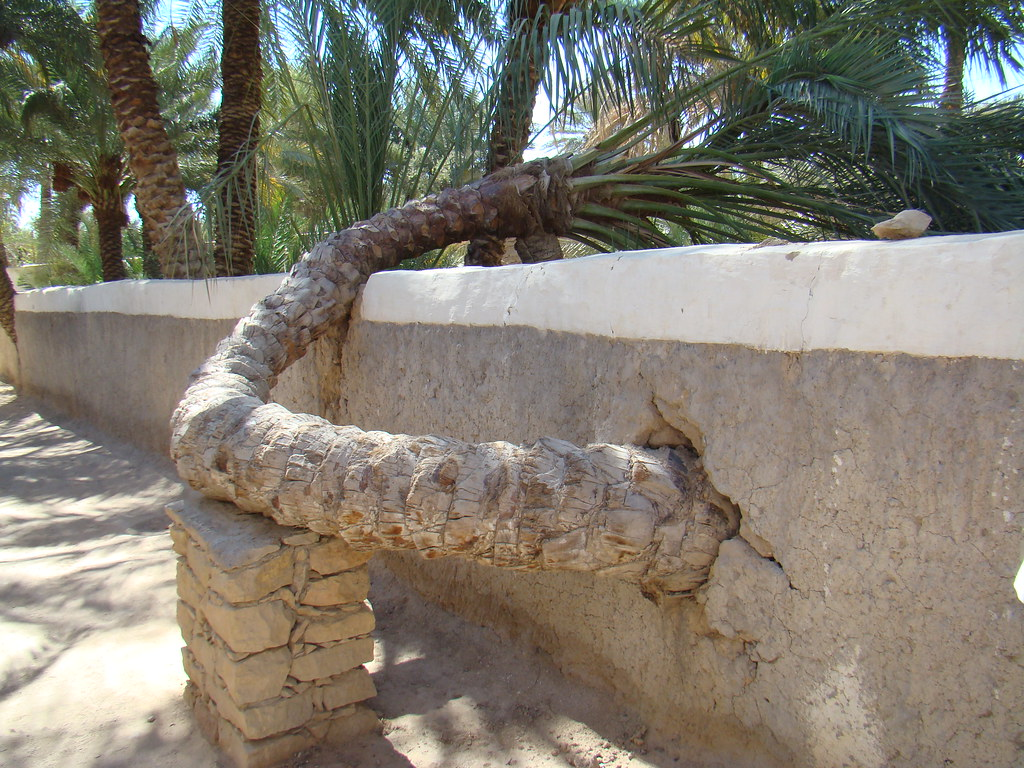 Oasis de Gadames Desierto del Sahara Libia 06