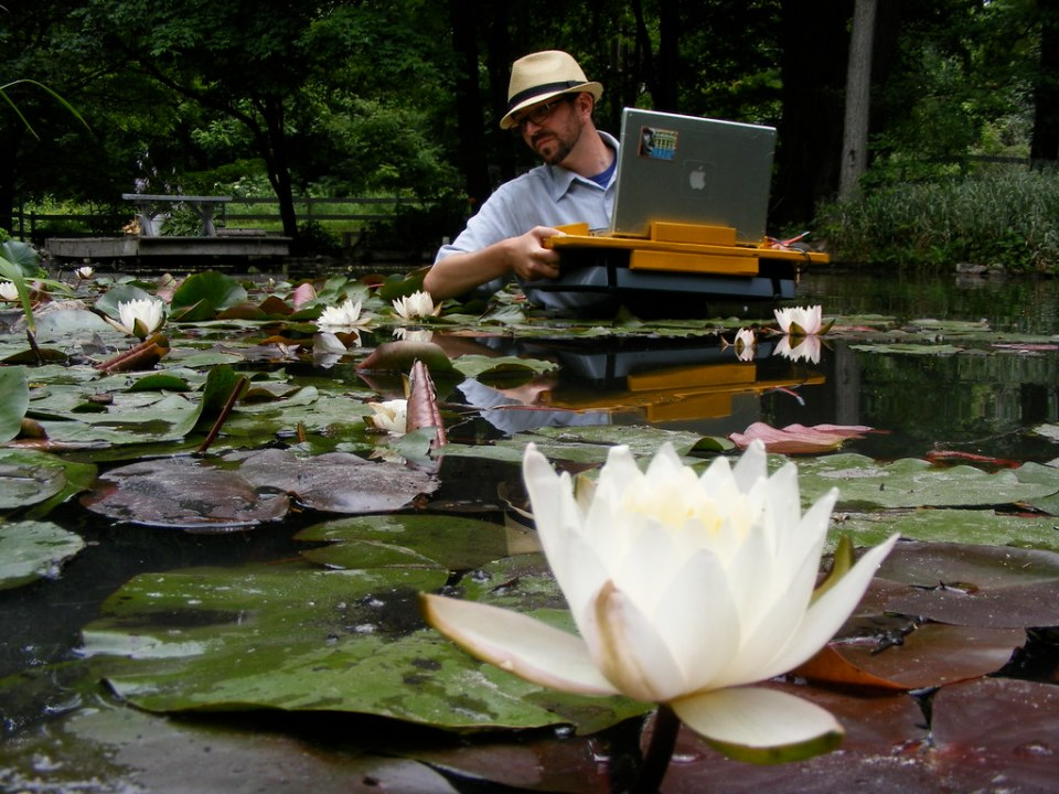 nathaniel stern scanning water lilies