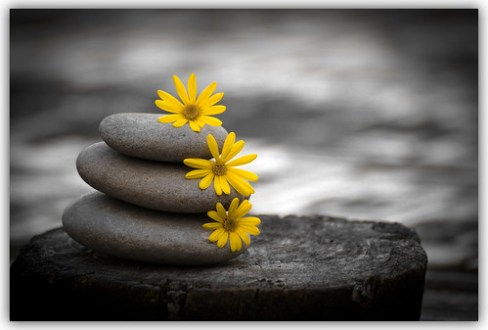 Piedras de primavera, spring stones.