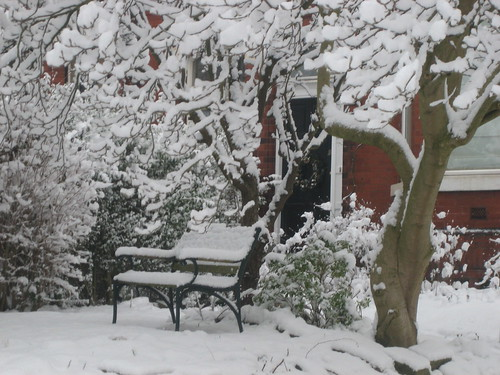 Bench in snow