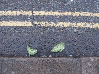 frozen street broccoli