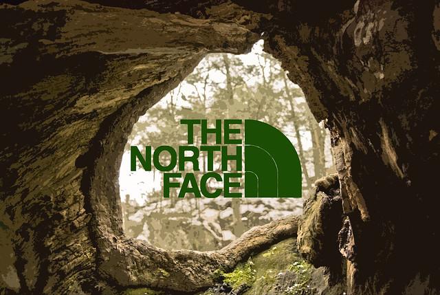 The North Face Logo  Flickr  Photo Sharing
