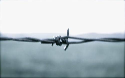 Trust blur...