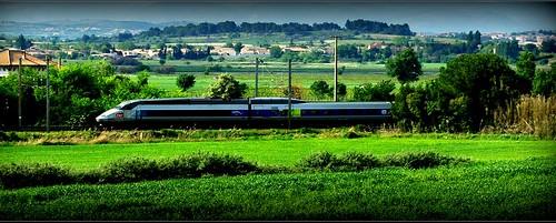Le TGV Bruxelles-Perpignan entre Béziers et Narbonne.