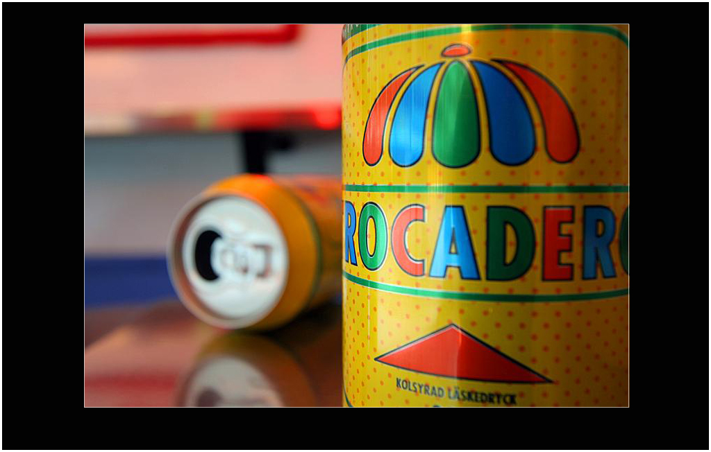 Trocadero 33cl Cans