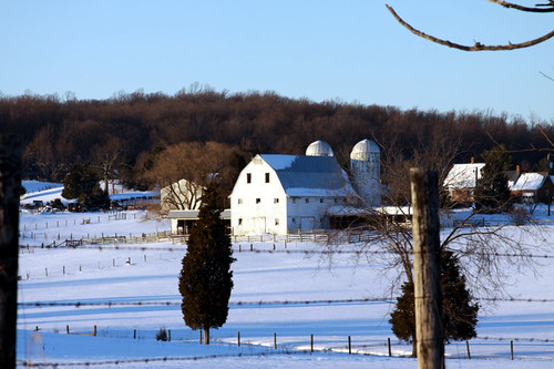 Farm in Snow. Warrenton, VA