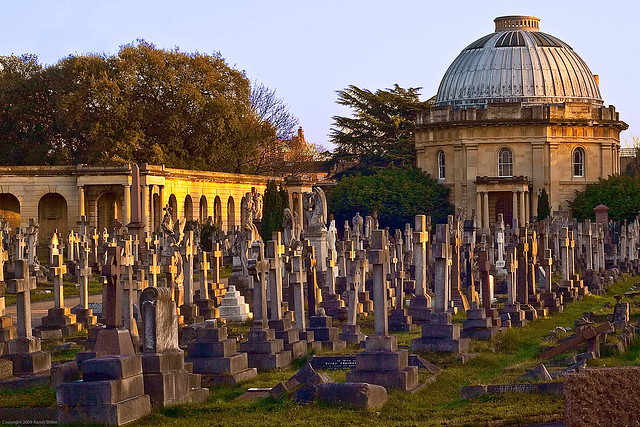 152/365 - Brompton Cemetery