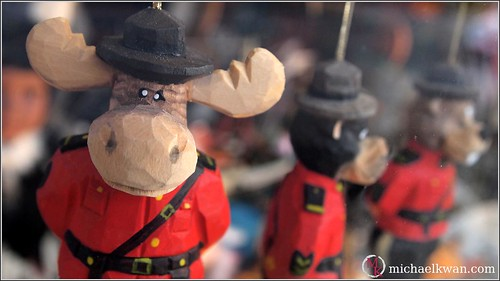Moose Mountie