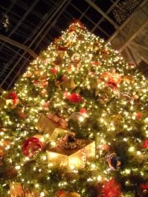 Opryland Hotel Christmas 2009 - Sharing
