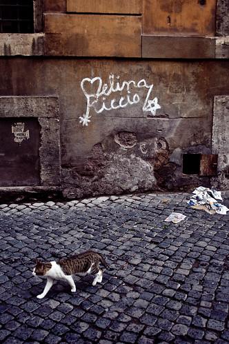 Melina Riccio by Tranuf