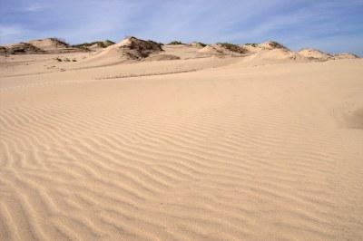Texas Sand Dunes | South Padre Island, Texas | Stuart ...