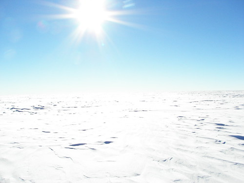 South Pole Landscape