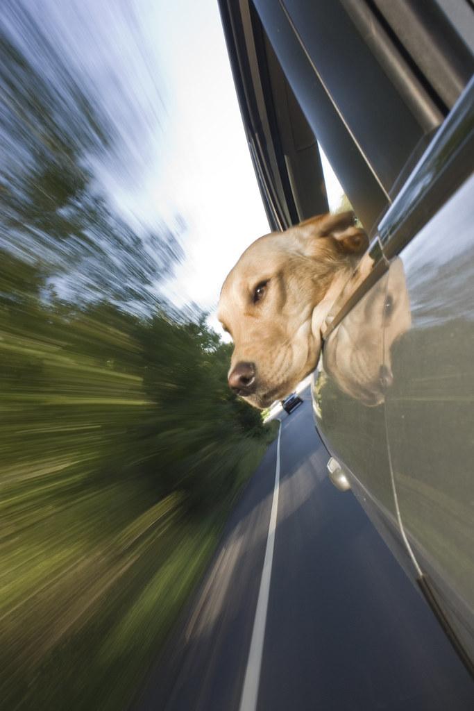 Warp Speed!