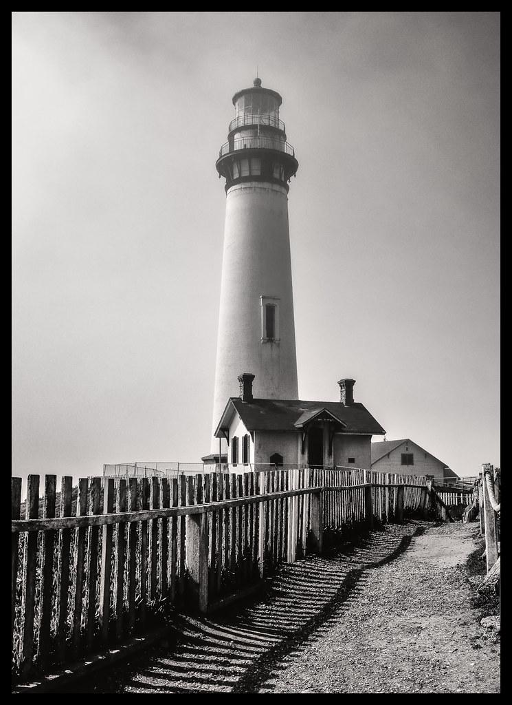 Standing Tall - Pigeon Point Light - 2014