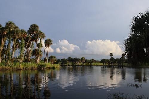 up the Econ River-Florida by jayfherron