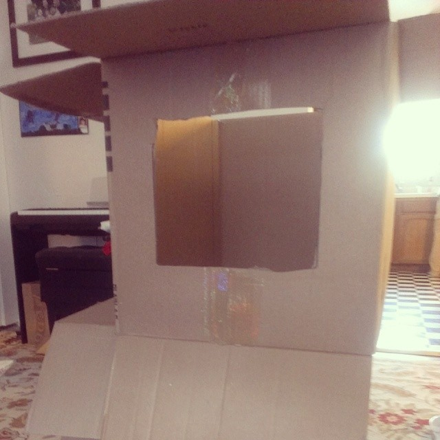 The hit gift of the day? A cardboard box...they made it into a puppet theatre. #whydowebuypresents