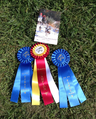 Wizard and Brigid's hunter pace debut, and my first since, oh, the late 90s? Special thanks to my most excellent hunter pace partner, Christie, for a great day in the park!