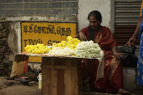 Flower Seller color