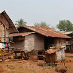 03 Viajefilos en Laos, Bolaven Plateau 77