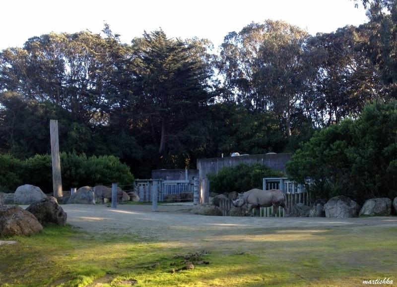 San Francisco Zoo (32)