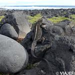 Viajefilos en San Cristobal, Galapagos 053