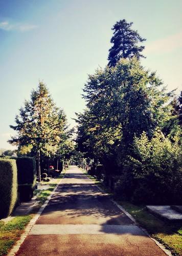 Graveyard walk by SpatzMe