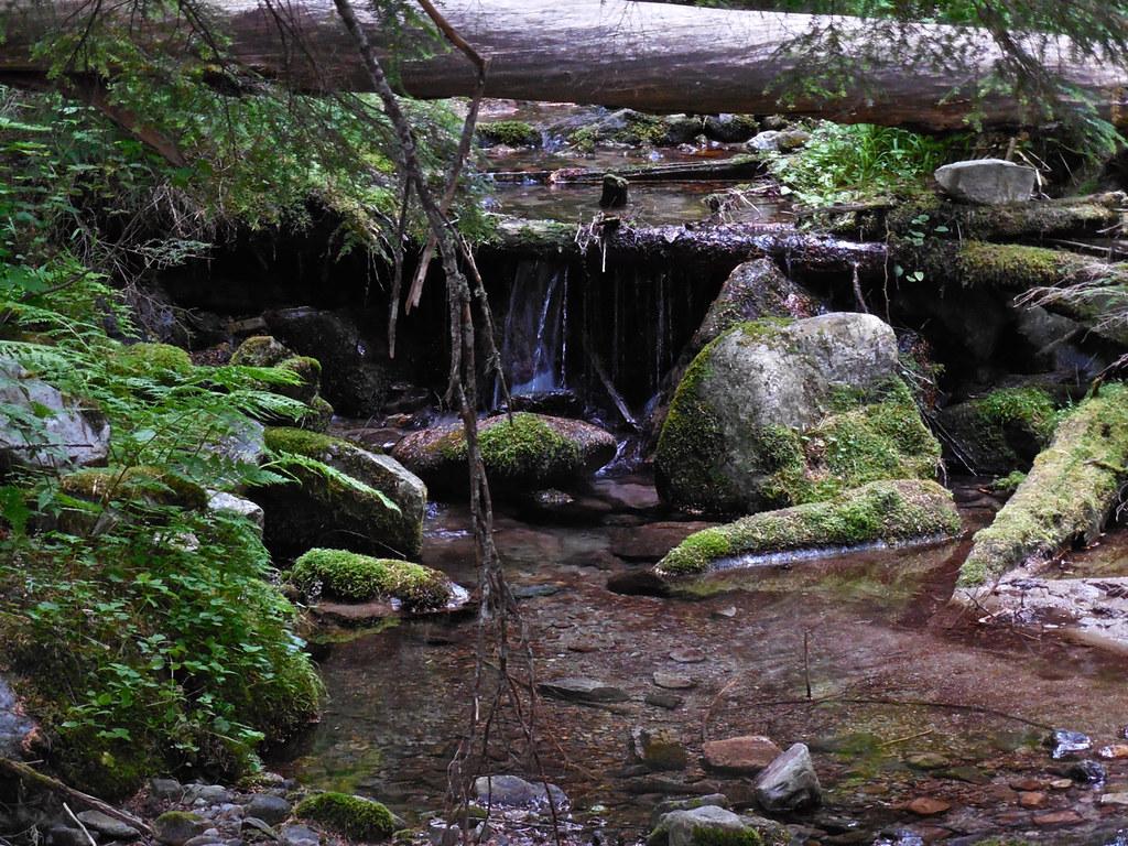 St Paul Lake trail