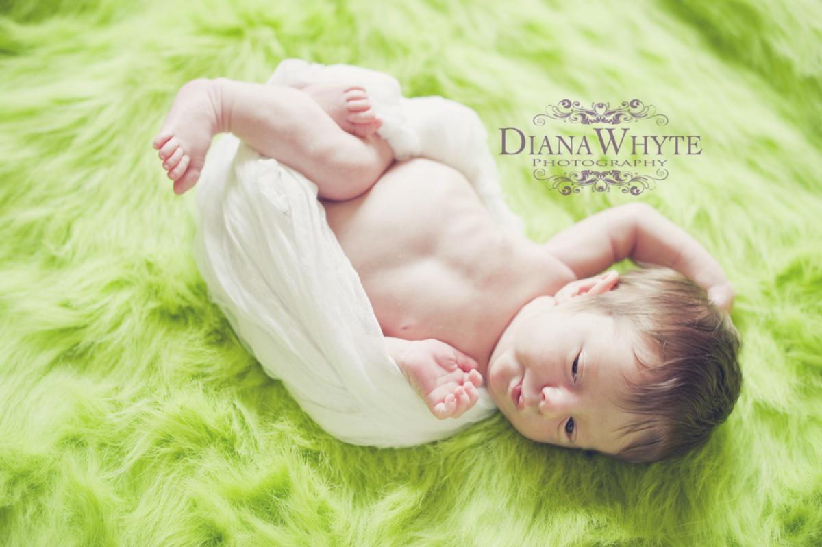 Owen 59p2