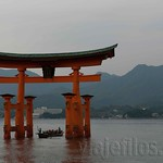 Hiroshima-Miyahima-14
