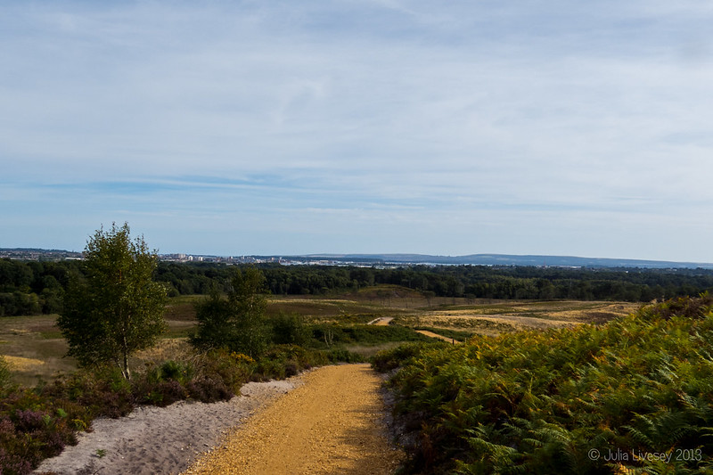 Looking towards Poole Harbour and Arne