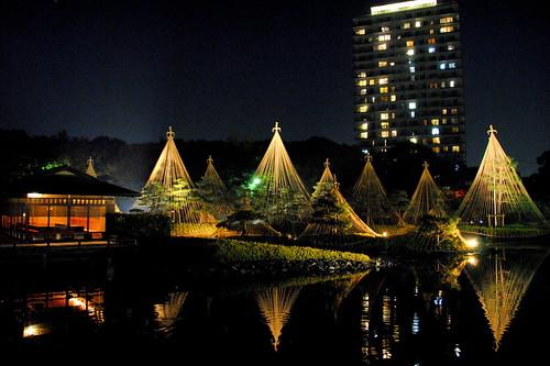 Shirotori Fall Lightup 031r