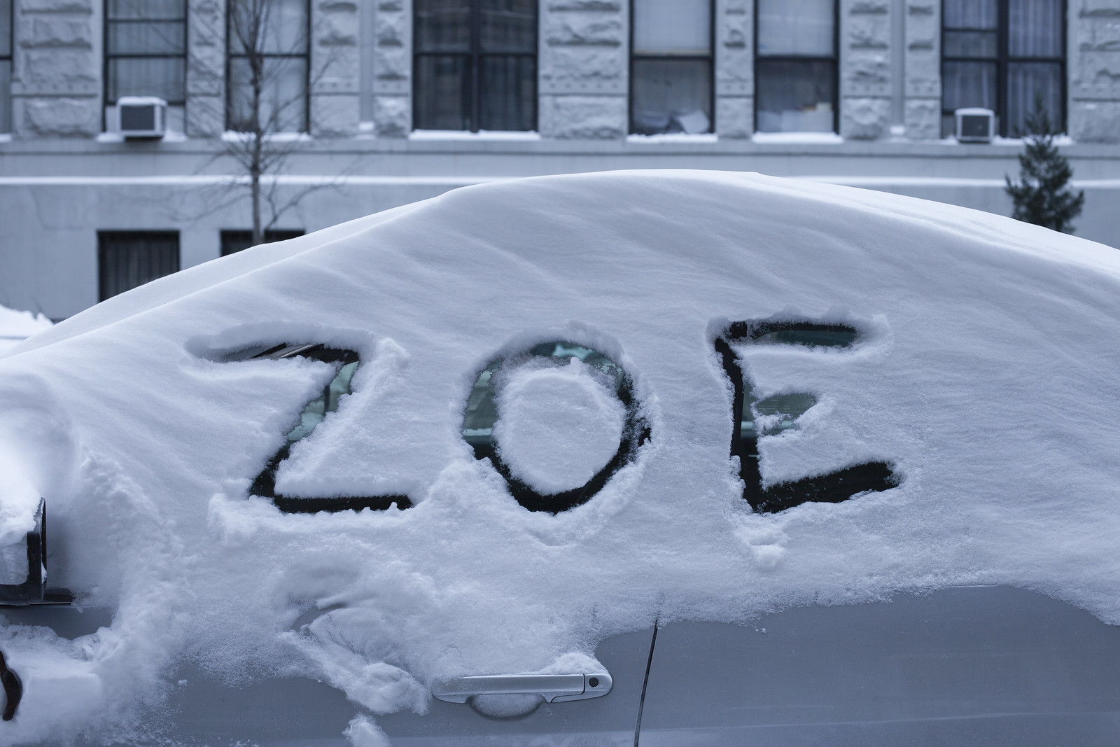 ZOE by wwward0