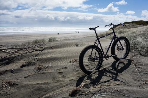 Muriwai Dunes