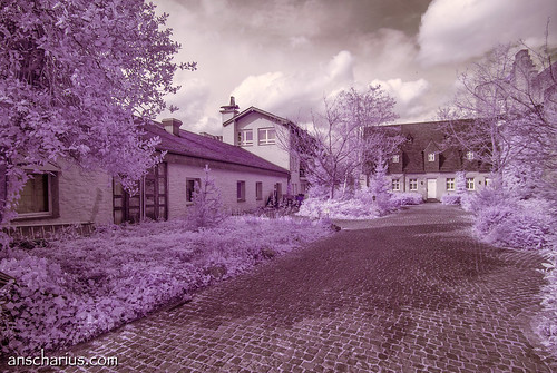First Impressions #8 - Nikon 1 V1 - Infrared 700nm