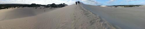 Pano of the Little Sahara sand dunes