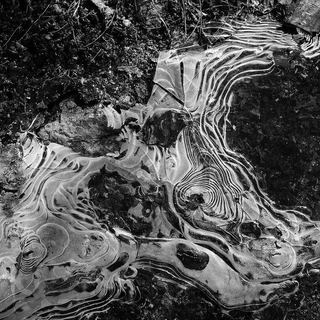 Ice patterns in a rut