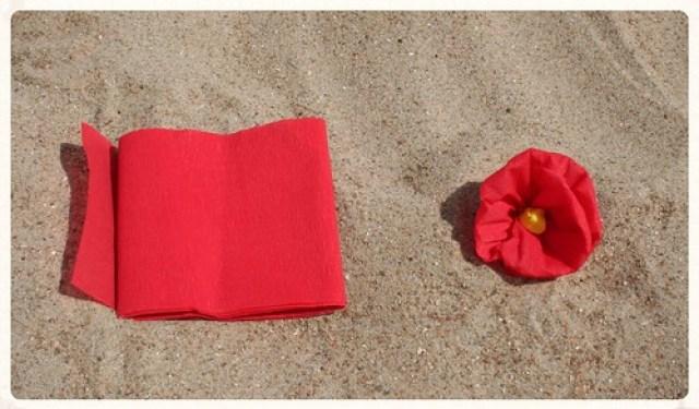 Soorten strandbloemen (3)