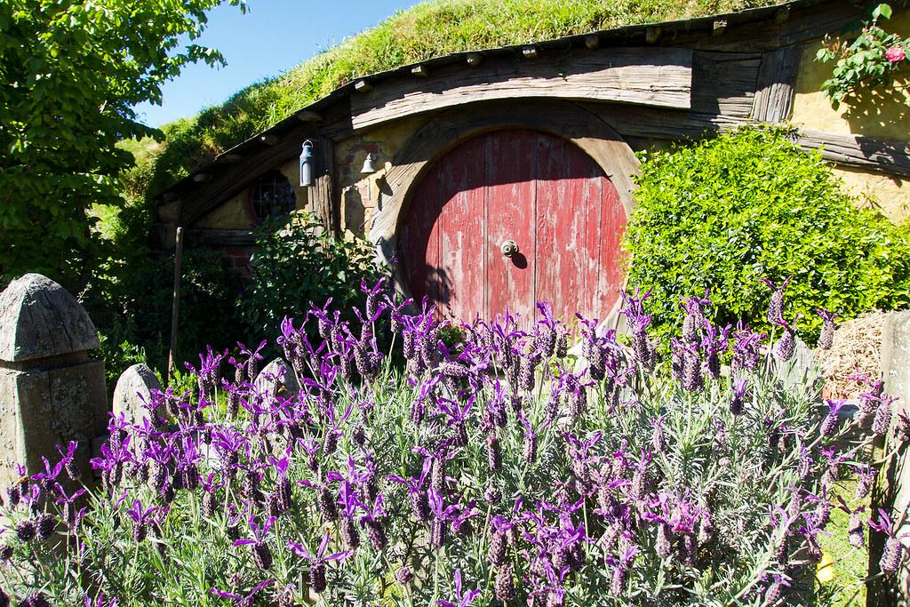 The flowers around Hobbiton are beautiful.