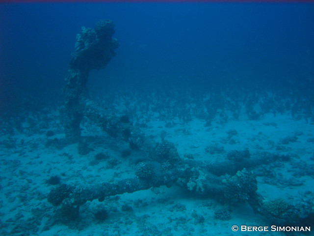 Maui_09_20080321
