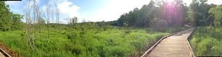 Swamp Rabbit Trail Panorama
