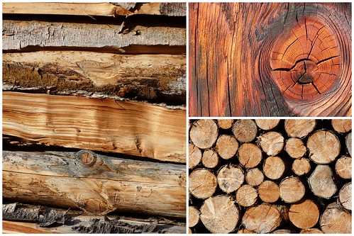 Holz 2014-01-132