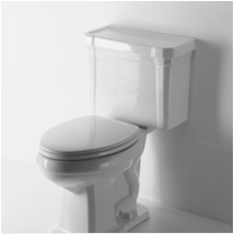 Waterworks Toilet