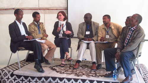 Amanda Harding moderating the high level panel closing the Knowledge Watershed (Photo credit: Ewen Le Borgne / ILRI)