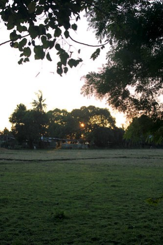 Last Sunset of 2013... hidden behind trees.