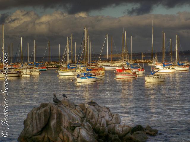 Montery Bay, California