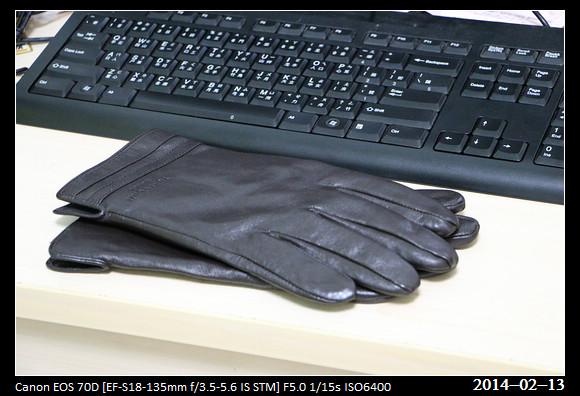 20140213_Gloves